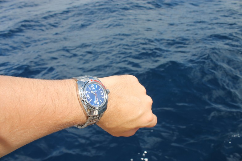 Амфибия и Карибское море. Правда одного цвета?